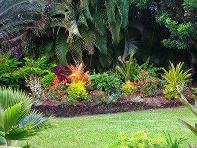 Pencarian Tukang Taman di Solo yang Berkualitas