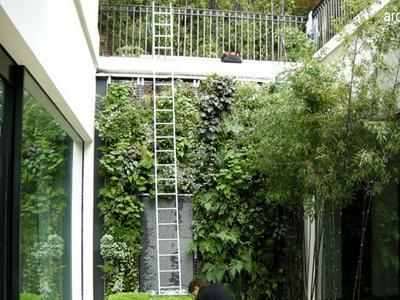 Vertical Garden, Solusi Keindahan Pada Lahan Sempit
