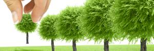jasa konsultan lingkungan hidup
