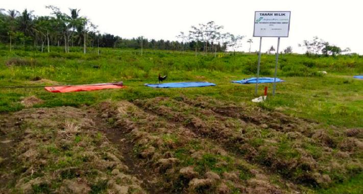 Jasa Pembuatan Amdal Kawasan Pertanian Perkebunan Jasa Konsultan